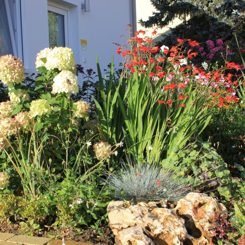 Vorgarten des Haus Kallenberg